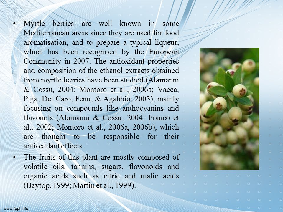 Myrtle berries are well known in some Mediterranean areas since they are used for food aromatisation, and to prepare a typical liqueur, which has been recognised by the European Community in 2007.