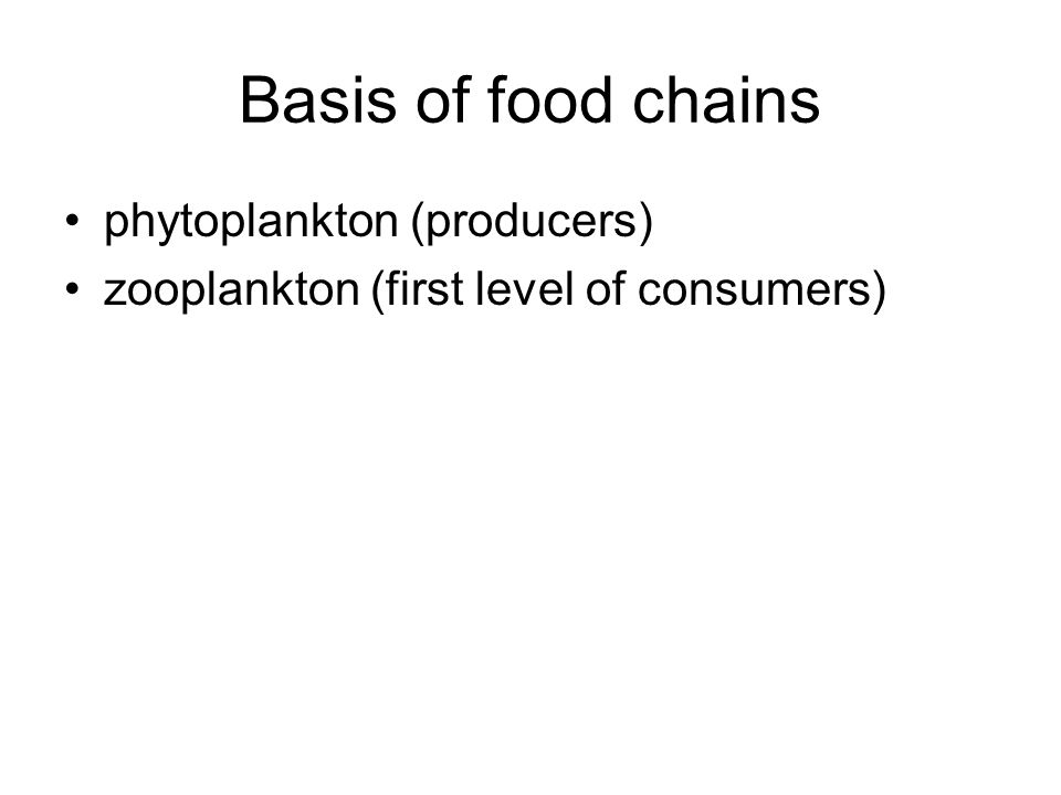 Basis of food chains phytoplankton (producers) zooplankton (first level of consumers)