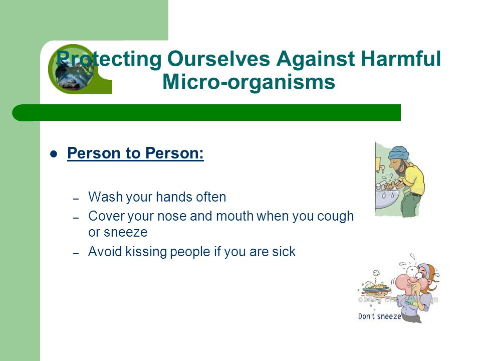 Protecting Ourselves Against Harmful Micro-organisms Person to Person: – Wash your hands often – Cover your nose and mouth when you cough or sneeze – Avoid kissing people if you are sick