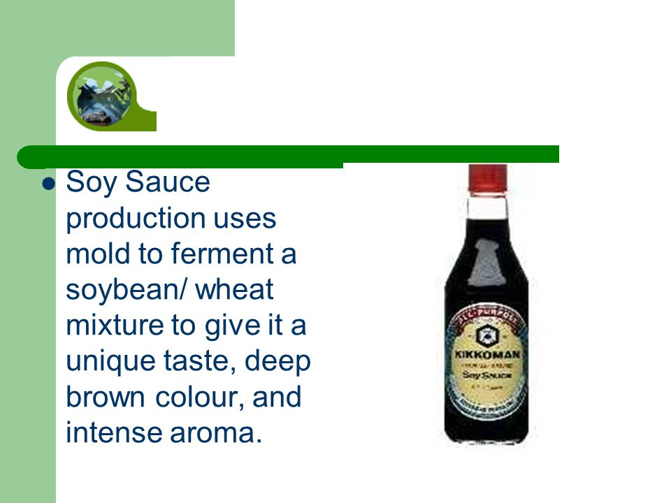 Soy Sauce production uses mold to ferment a soybean/ wheat mixture to give it a unique taste, deep brown colour, and intense aroma.