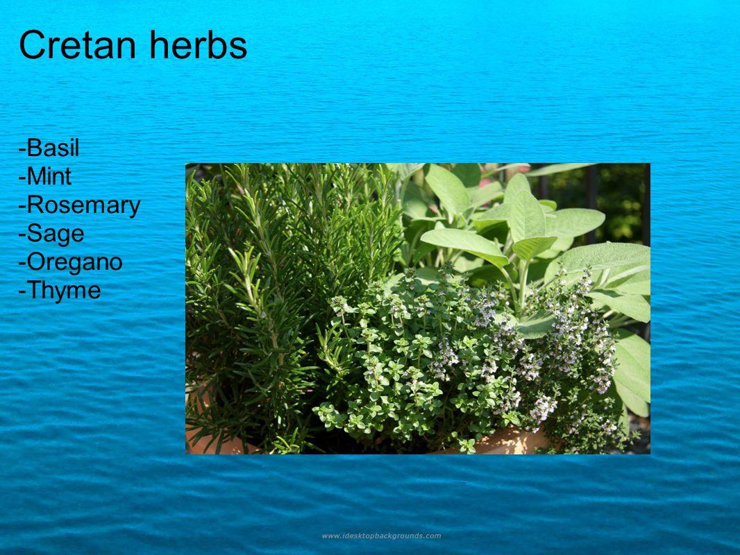 Cretan herbs -Basil -Mint -Rosemary -Sage -Oregano -Thyme