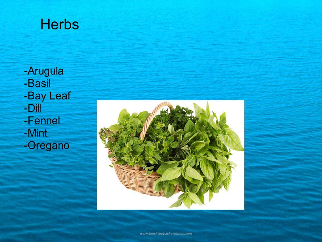 Herbs -Arugula -Basil -Bay Leaf -Dill -Fennel -Mint -Oregano Herbs