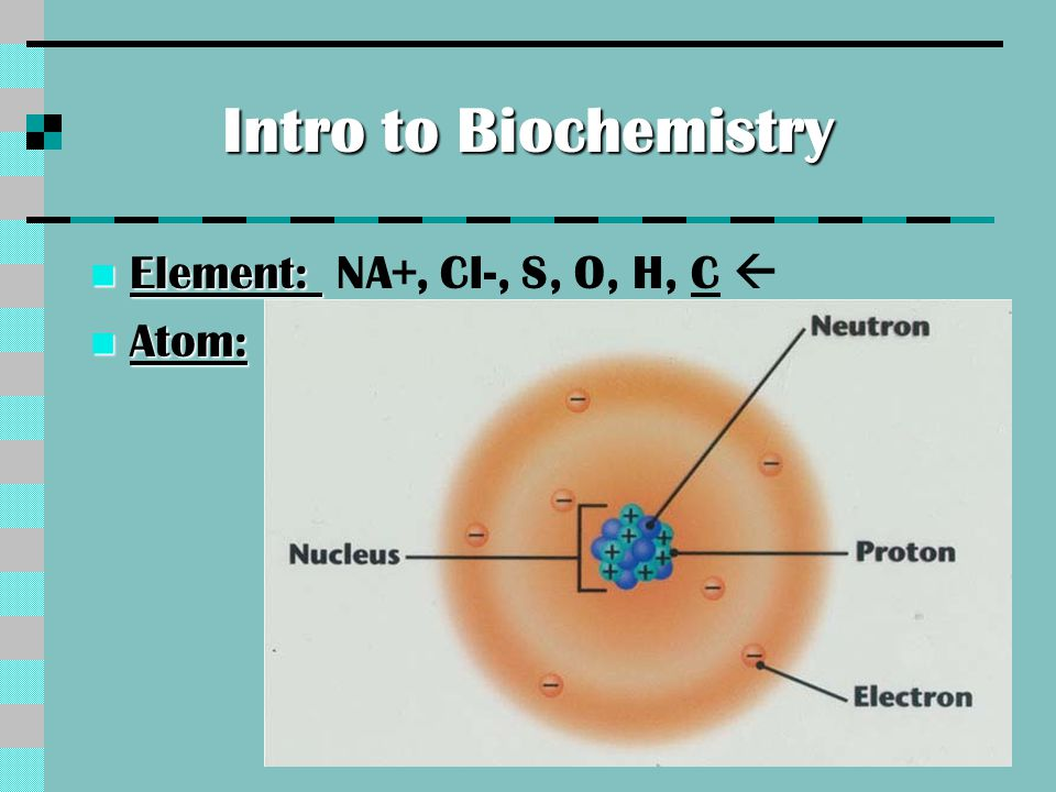 Intro to biochem.Continued..