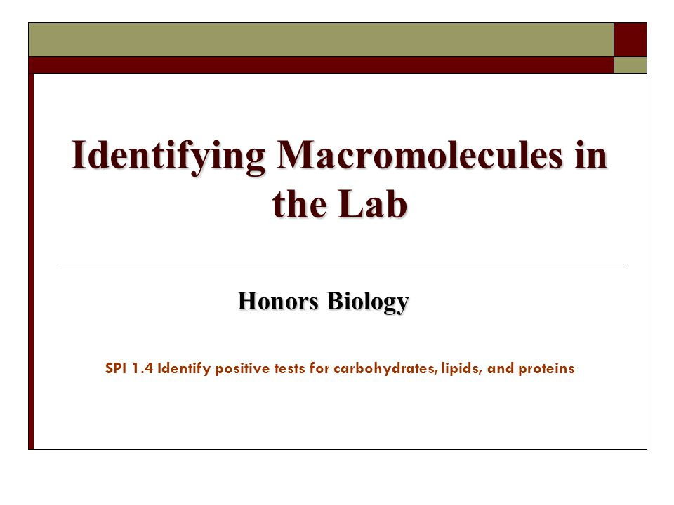 Identifying Macromolecules in the Lab Honors Biology SPI 1.4 Identify positive tests for carbohydrates, lipids, and proteins