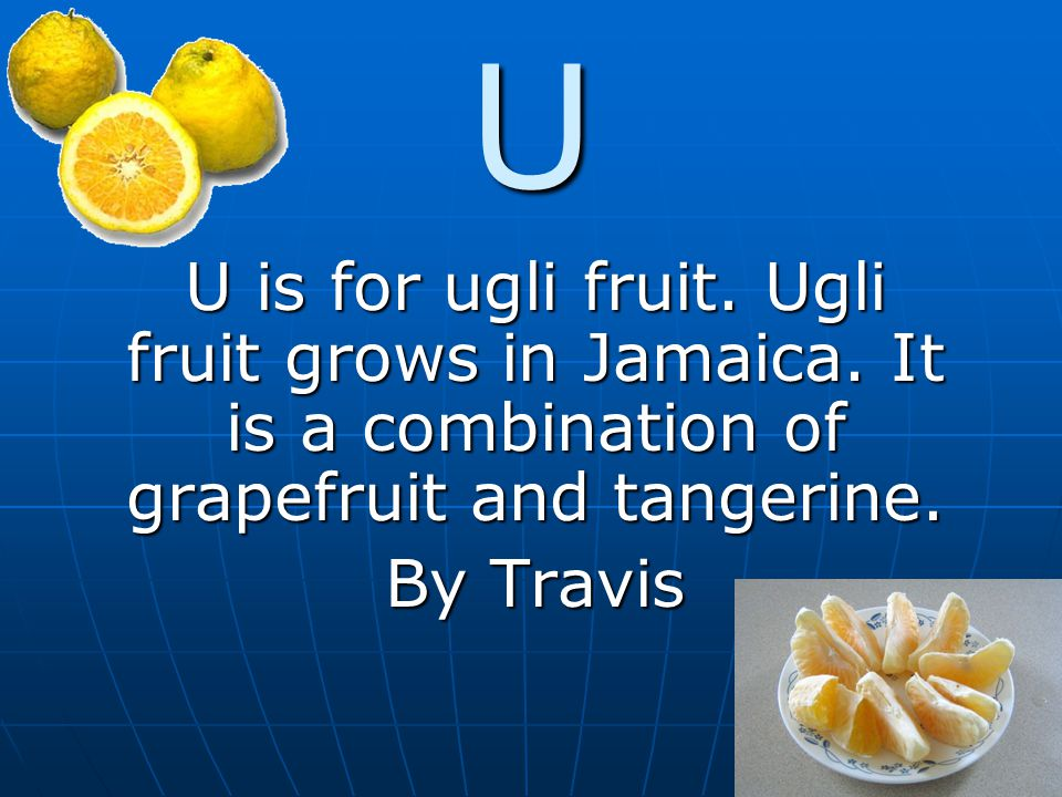 U U is for ugli fruit. Ugli fruit grows in Jamaica. It is a combination of grapefruit and tangerine. By Travis