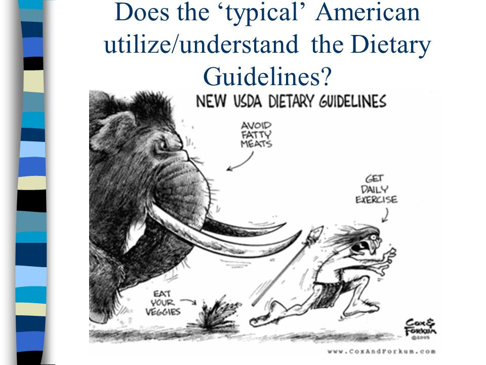 Does the 'typical' American utilize/understand the Dietary Guidelines?