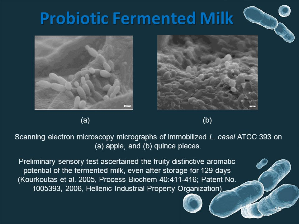 15 Probiotic Fermented Milk Preliminary sensory test ascertained the fruity distinctive aromatic potential of the fermented milk, even after storage f