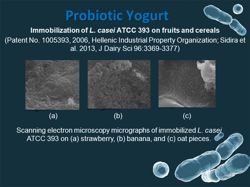 Probiotic Yogurt 16 Immobilization of L.casei ATCC 393 on fruits and cereals (Patent No.