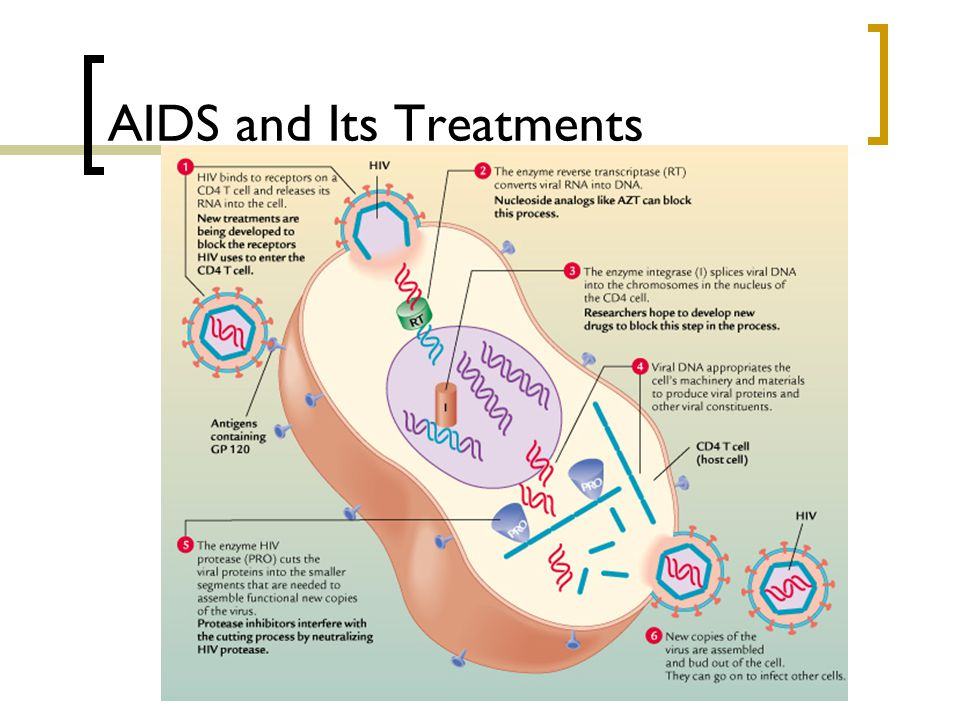 AIDS and Its Treatments