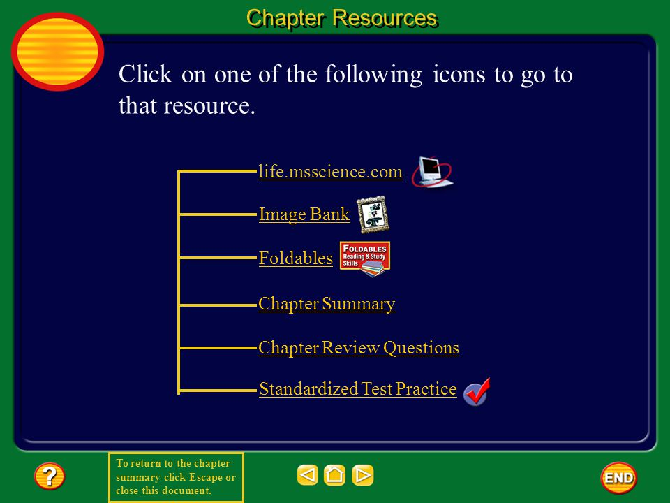 To return to the chapter summary click Escape or close this document.