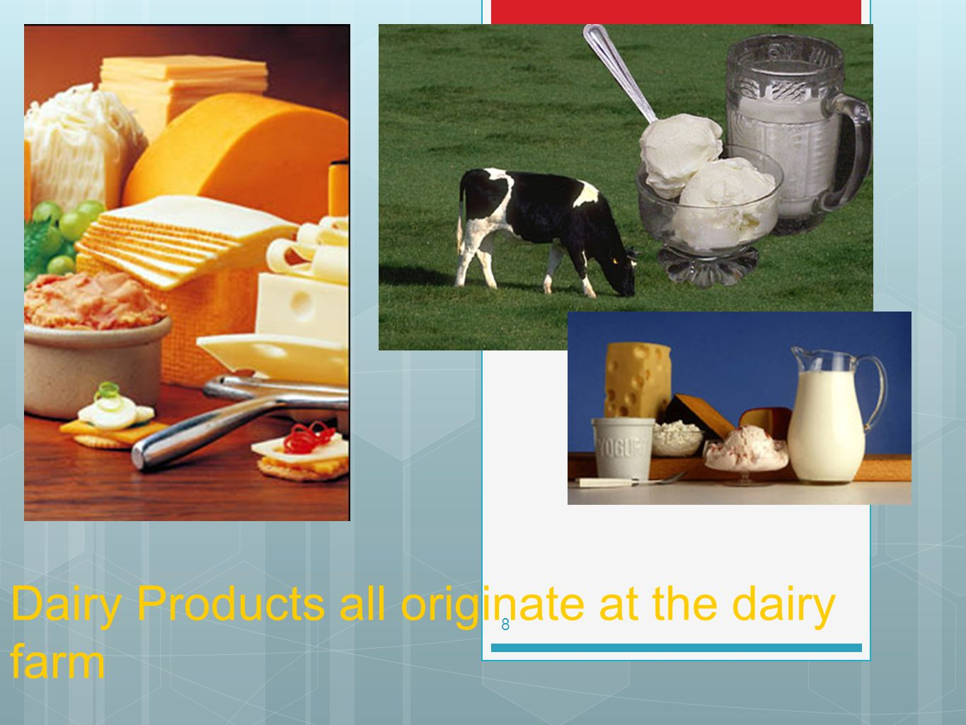 Dairy Products all originate at the dairy farm 8