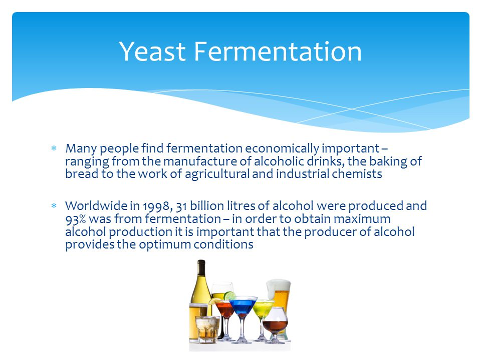  Many people find fermentation economically important – ranging from the manufacture of alcoholic drinks, the baking of bread to the work of agricultural and industrial chemists  Worldwide in 1998, 31 billion litres of alcohol were produced and 93% was from fermentation – in order to obtain maximum alcohol production it is important that the producer of alcohol provides the optimum conditions Yeast Fermentation