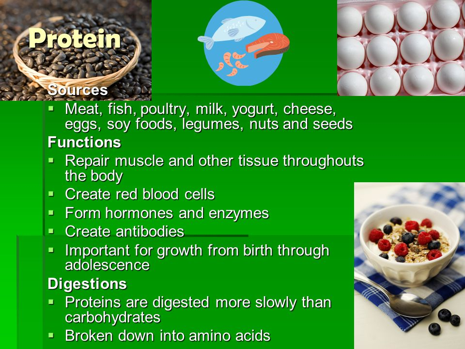 ProteinSources  Meat, fish, poultry, milk, yogurt, cheese, eggs, soy foods, legumes, nuts and seeds Functions  Repair muscle and other tissue throug