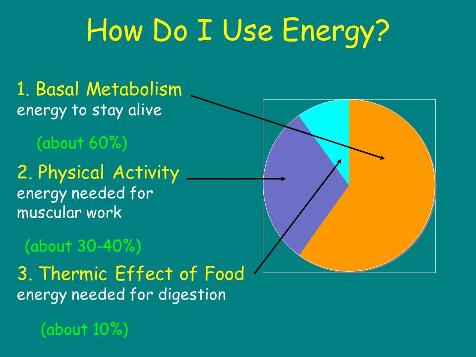 How Do I Use Energy. 1. Basal Metabolism energy to stay alive 2.