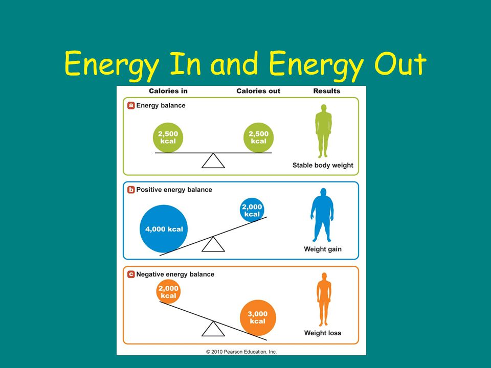 Energy In and Energy Out