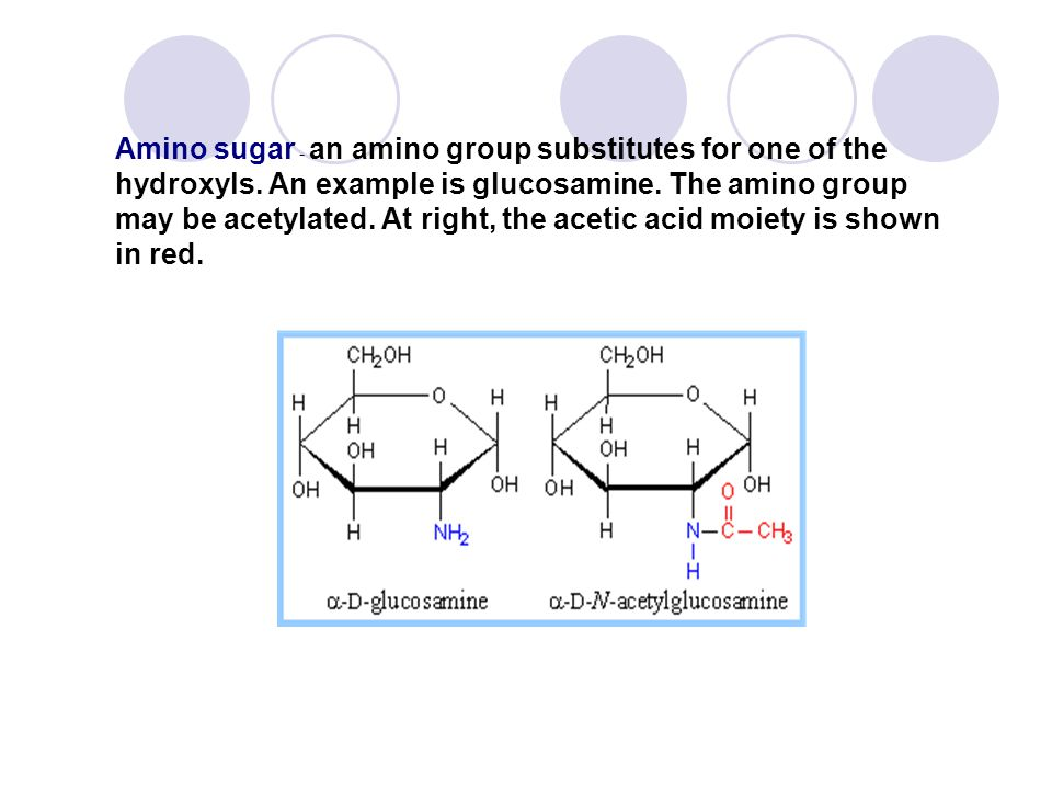 Amino sugar - an amino group substitutes for one of the hydroxyls. An example is glucosamine. The amino group may be acetylated. At right, the acetic