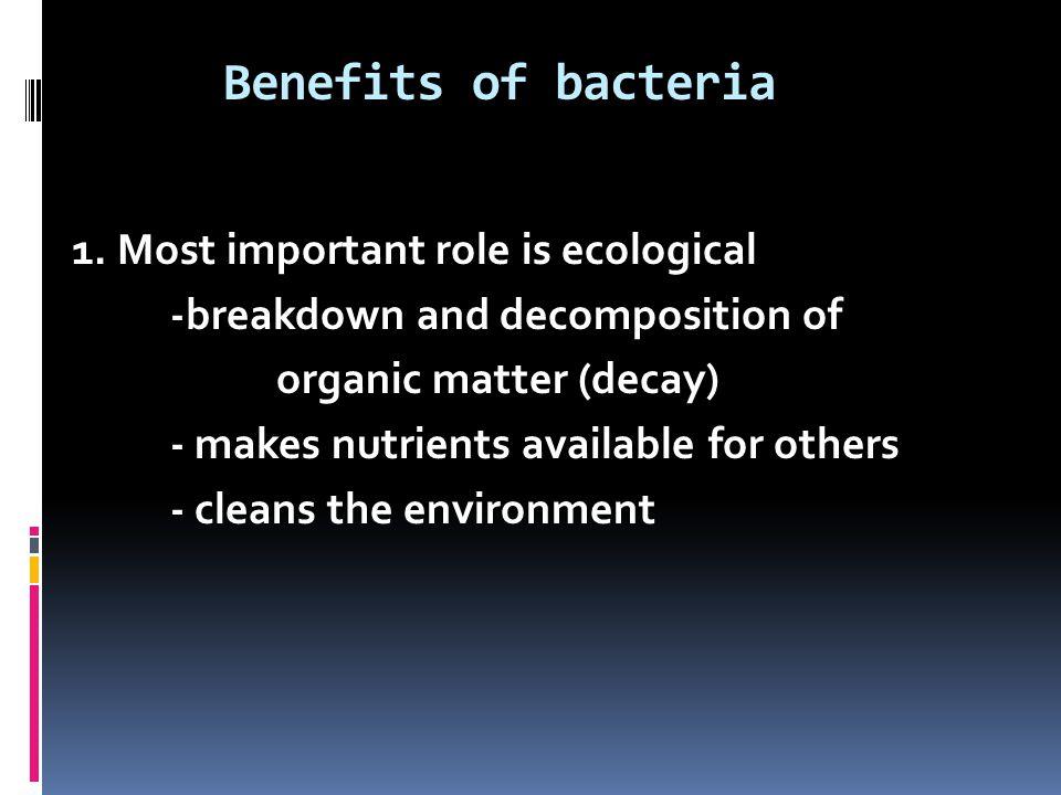 Benefits of bacteria 1.