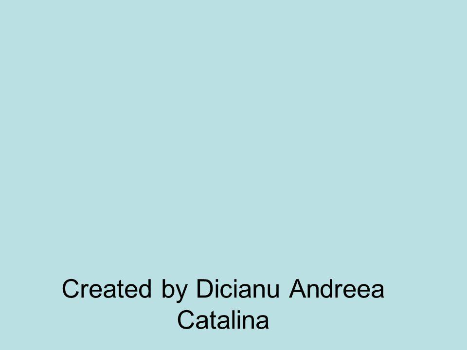 Created by Dicianu Andreea Catalina