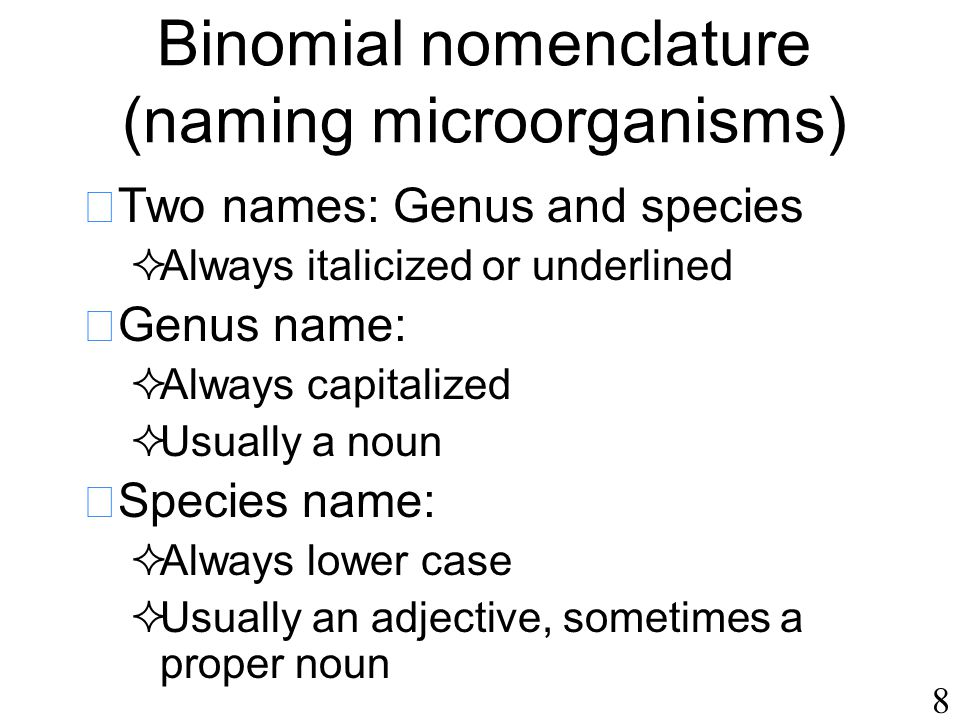 8 Binomial nomenclature (naming microorganisms)  Two names: Genus and species  Always italicized or underlined  Genus name:  Always capitalized  Usually a noun  Species name:  Always lower case  Usually an adjective, sometimes a proper noun