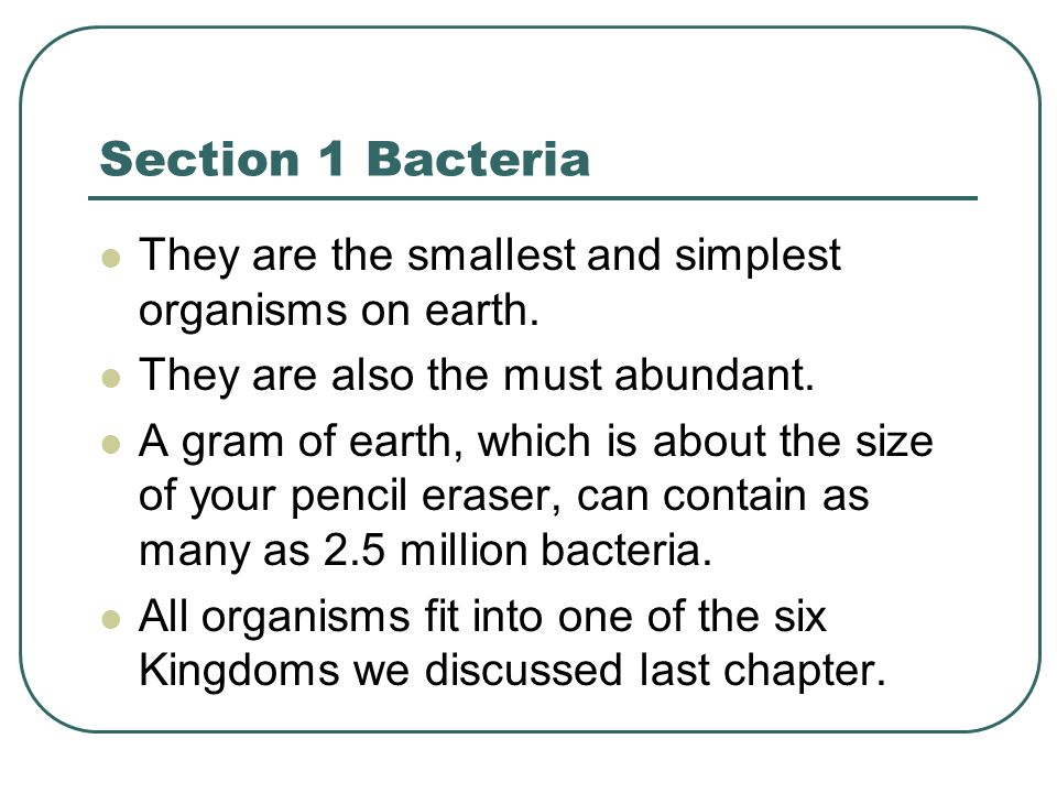 Section 1 continued The two Kingdoms that bacteria fall under are Archaebacteria and Eubacteria.
