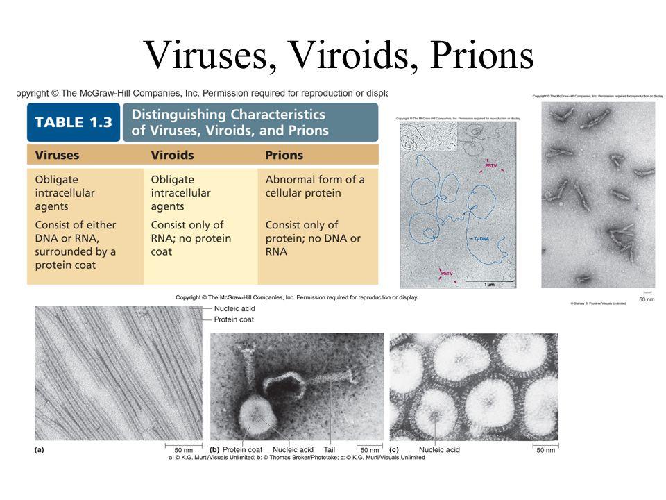 Viruses, Viroids, Prions