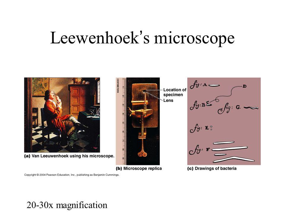 Leewenhoek's microscope 20-30x magnification