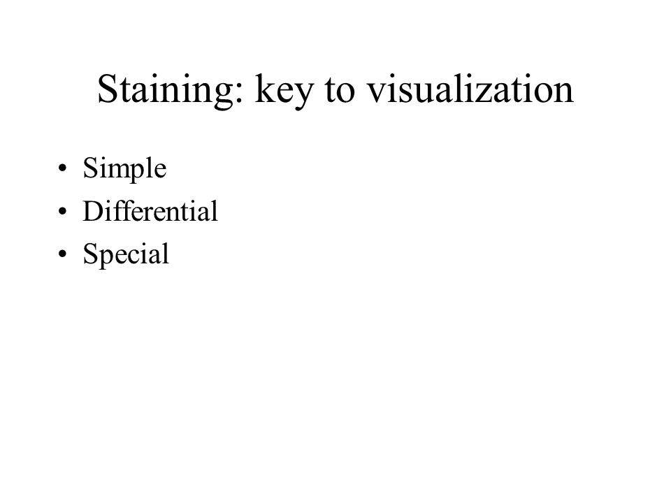 Staining: key to visualization Simple Differential Special
