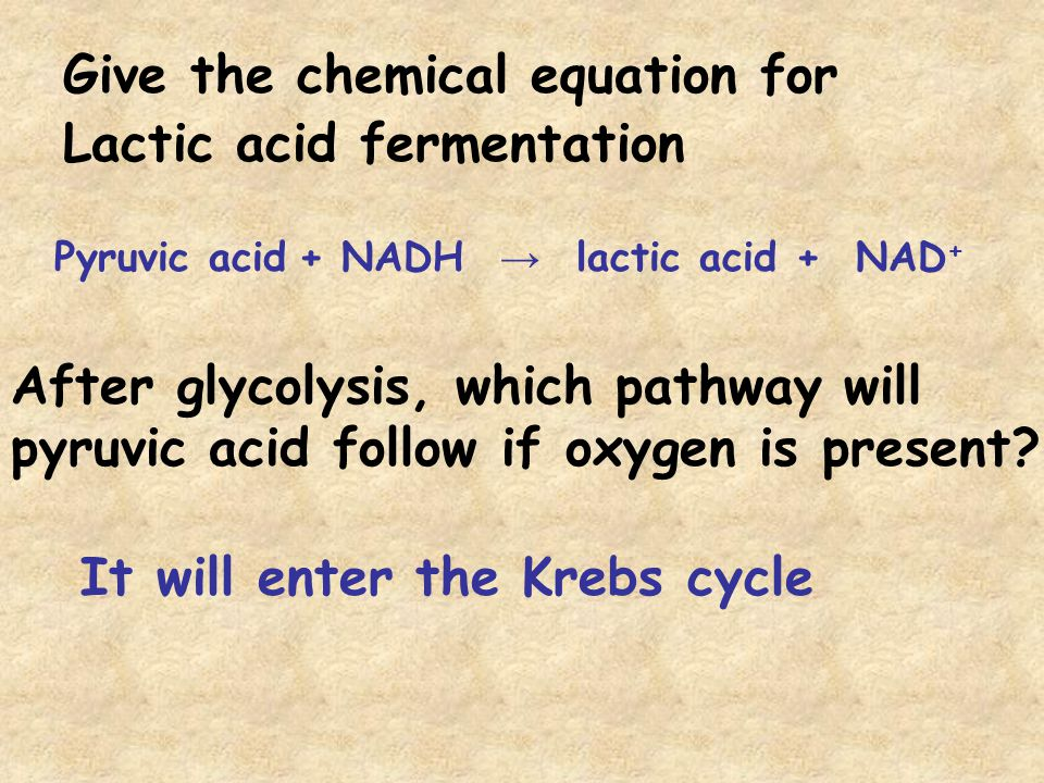 Glycolysis is also called the ____________________ pathway.