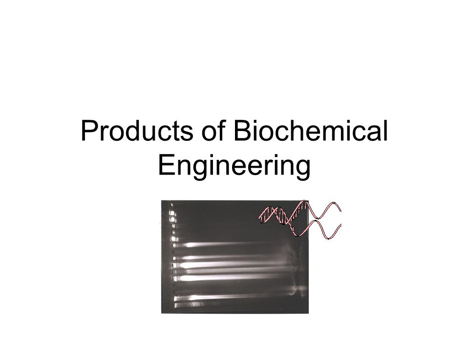 Products of Biochemical Engineering