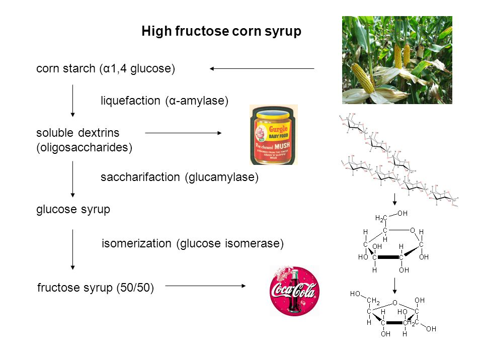 High fructose corn syrup corn starch (α1,4 glucose) soluble dextrins (oligosaccharides) glucose syrup fructose syrup (50/50) liquefaction (α-amylase)