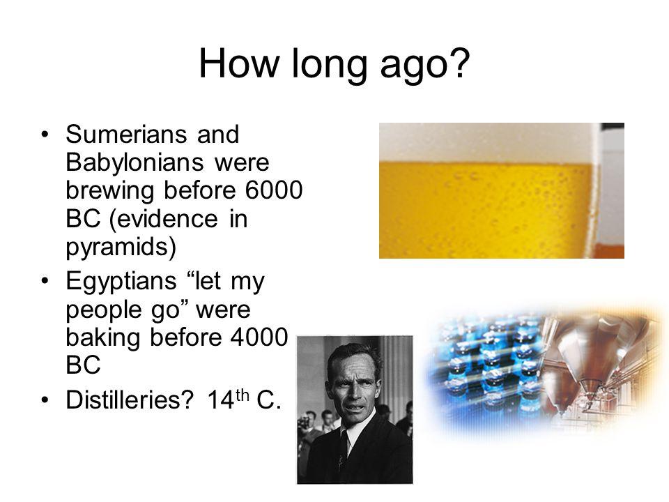 Ancient biotechnologies vinegar for fries...acetic acid bacteria lactic acid to acidify milk...