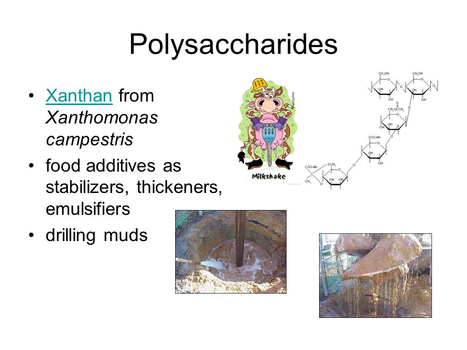 Polysaccharides Xanthan from Xanthomonas campestrisXanthan food additives as stabilizers, thickeners, emulsifiers drilling muds
