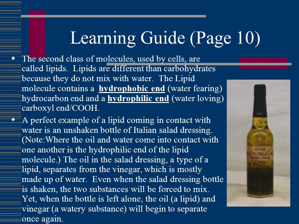 Learning Guide (Page 10)  The second class of molecules, used by cells, are called lipids.