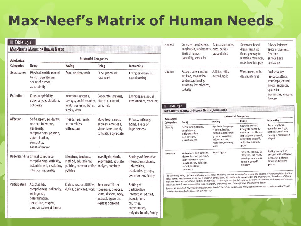 Max-Neef's Matrix of Human Needs