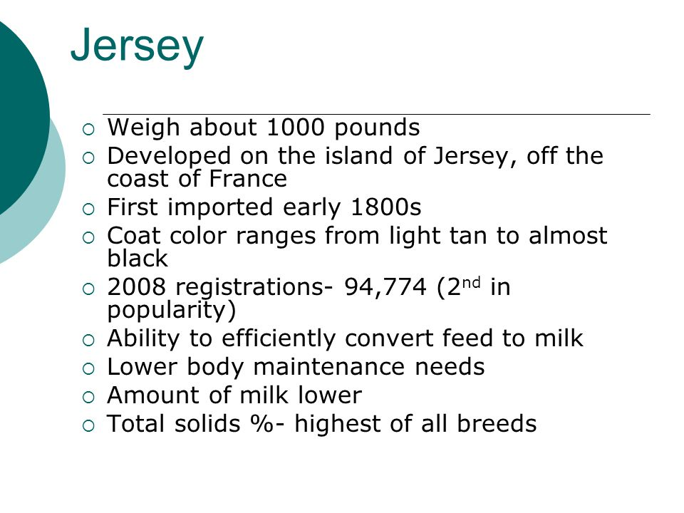 Jersey  Weigh about 1000 pounds  Developed on the island of Jersey, off the coast of France  First imported early 1800s  Coat color ranges from light tan to almost black  2008 registrations- 94,774 (2 nd in popularity)  Ability to efficiently convert feed to milk  Lower body maintenance needs  Amount of milk lower  Total solids %- highest of all breeds