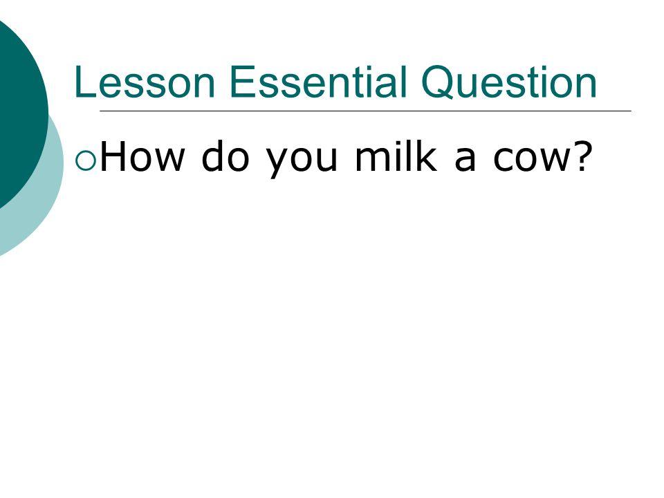 Lesson Essential Question  How do you milk a cow