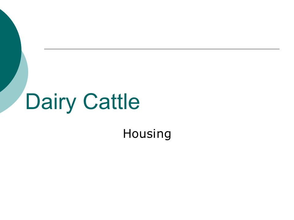 Dairy Cattle Housing