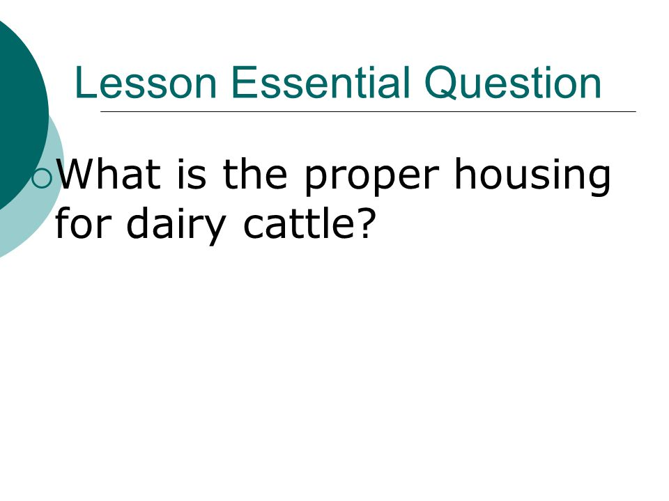 Lesson Essential Question  What is the proper housing for dairy cattle