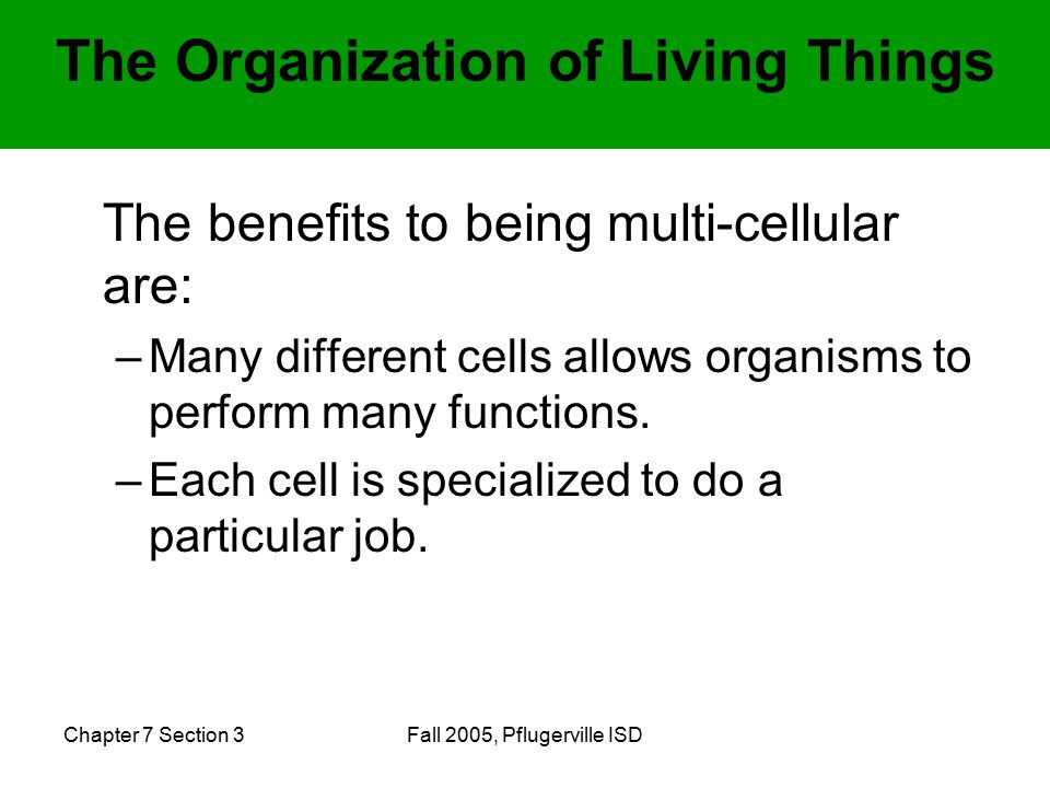Chapter 7 Section 3Fall 2005, Pflugerville ISD The benefits to being multi-cellular are: –Many different cells allows organisms to perform many functions.