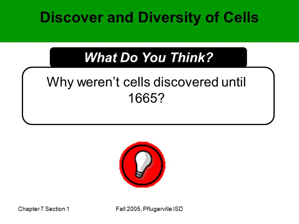 Chapter 7 Section 1Fall 2005, Pflugerville ISD Discover and Diversity of Cells Robert Hooke first to describe the cell.