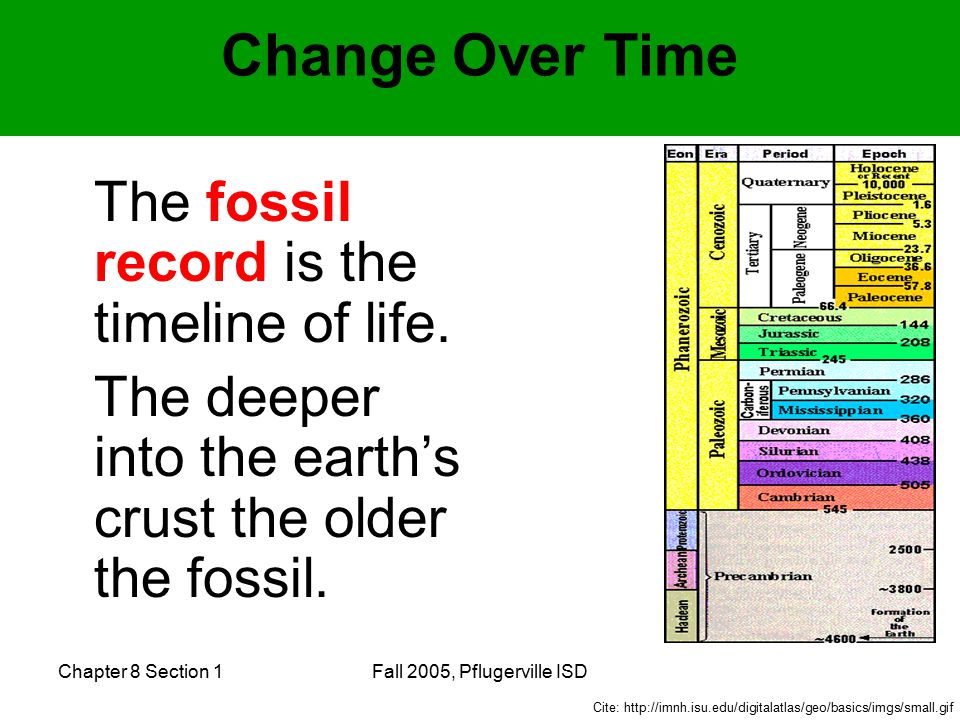 Chapter 8 Section 1Fall 2005, Pflugerville ISD Change Over Time The fossil record is the timeline of life.