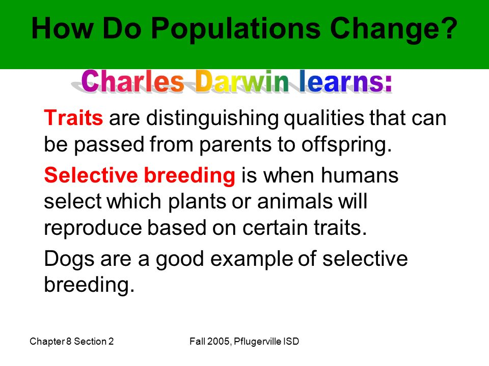 Chapter 8 Section 2Fall 2005, Pflugerville ISD Traits are distinguishing qualities that can be passed from parents to offspring.