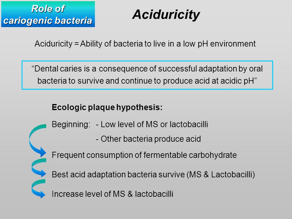 Aciduricity = Ability of bacteria to live in a low pH environment Dental caries is a consequence of successful adaptation by oral bacteria to survive and continue to produce acid at acidic pH Role of cariogenic bacteria Role of cariogenic bacteria Aciduricity Ecologic plaque hypothesis: Beginning: - Low level of MS or lactobacilli - Other bacteria produce acid Frequent consumption of fermentable carbohydrate Best acid adaptation bacteria survive (MS & Lactobacilli) Increase level of MS & lactobacilli