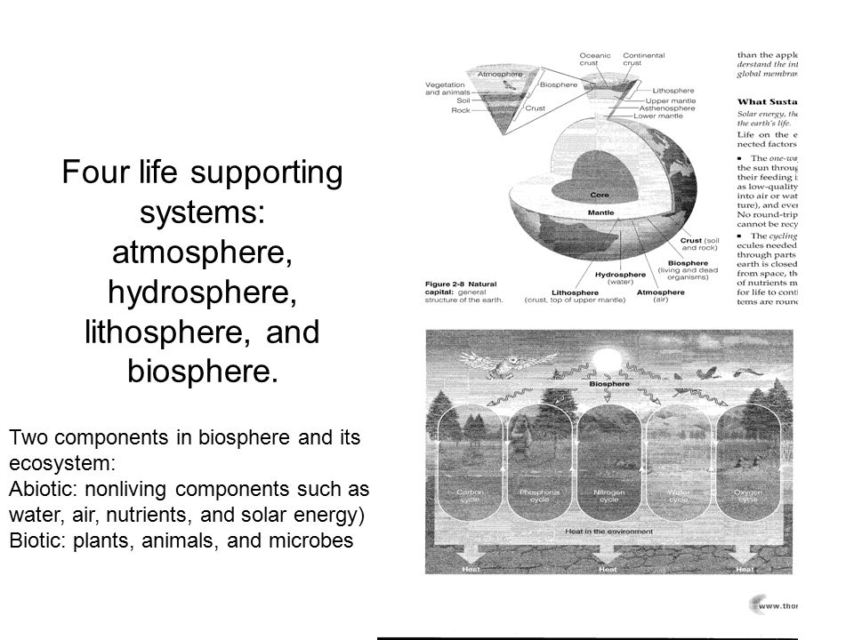 Four life supporting systems: atmosphere, hydrosphere, lithosphere, and biosphere. Two components in biosphere and its ecosystem: Abiotic: nonliving c