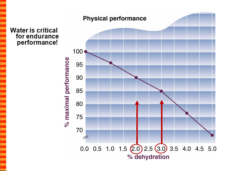 Water is critical for endurance performance!