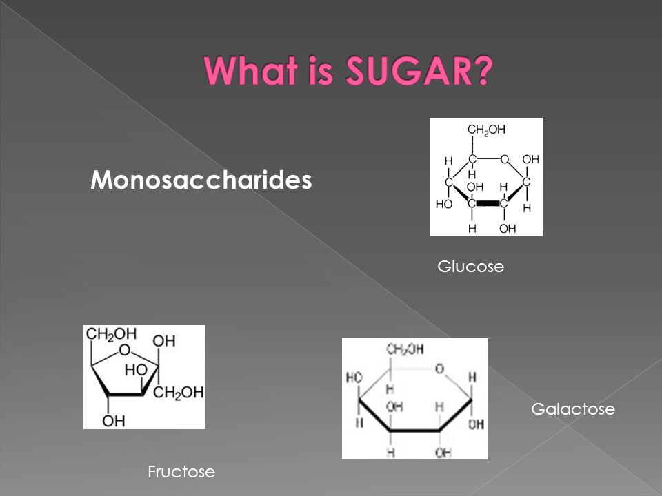 Disaccharides Sucrose = glu + fruc Maltose = glu + glu Lactose = glu + galac
