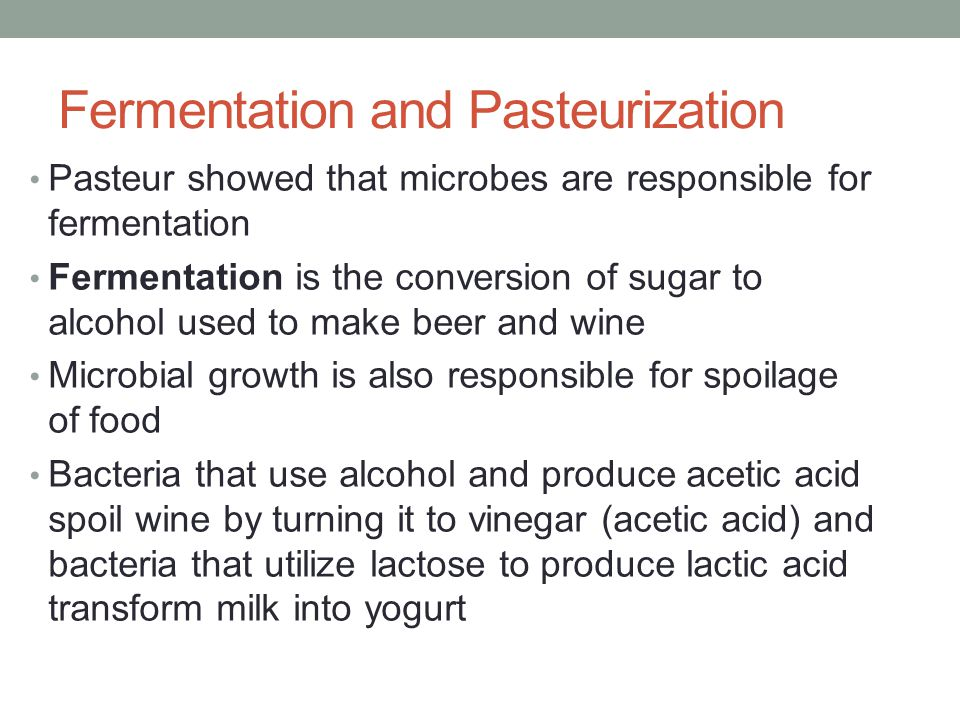 Fermentation and Pasteurization Pasteur showed that microbes are responsible for fermentation Fermentation is the conversion of sugar to alcohol used