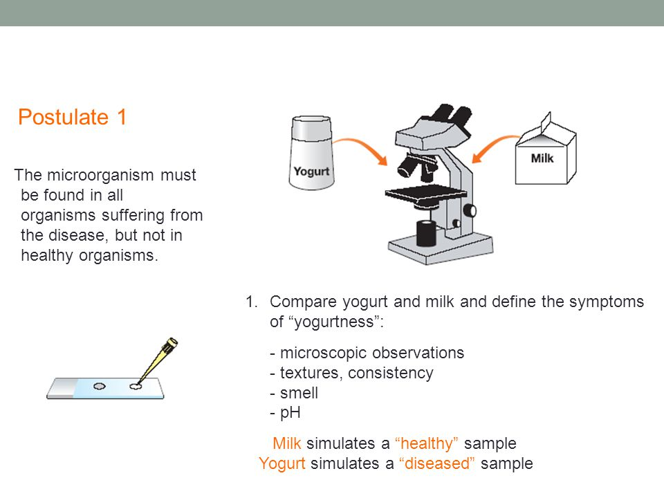 Postulate 1 The microorganism must be found in all organisms suffering from the disease, but not in healthy organisms.