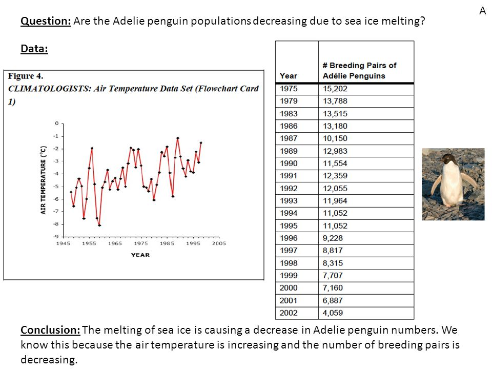 Question: Are the Adelie penguin populations decreasing due to sea ice melting.