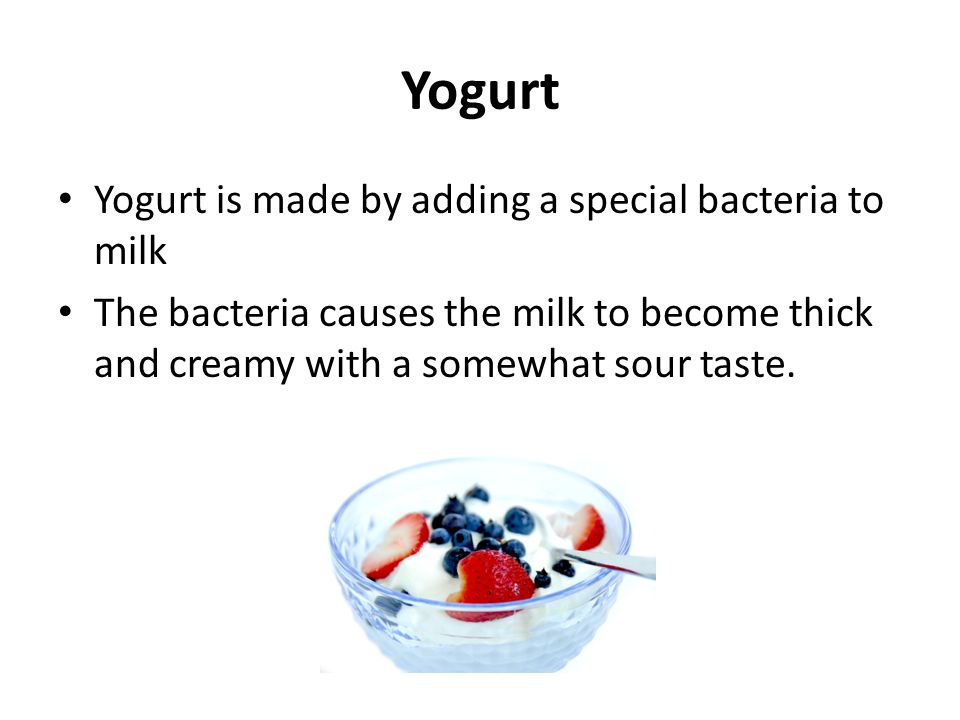 Yogurt Yogurt is made by adding a special bacteria to milk The bacteria causes the milk to become thick and creamy with a somewhat sour taste.